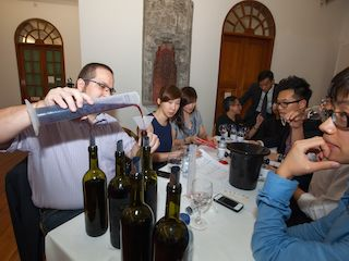 Wine Academy Group Activities